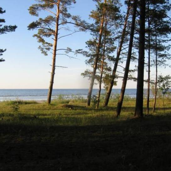 http://www.clubvi.ru/news/2011/07/19/ignatichev//clip_image021.jpg